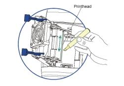 Cleaning Printhead Fargo DTC550